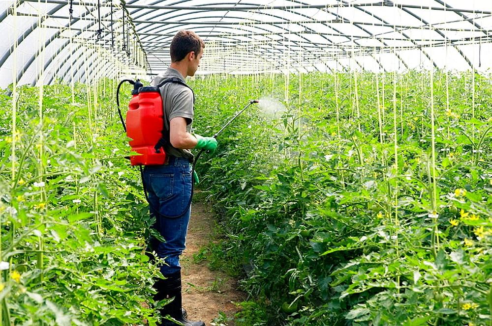 اسید بوریک در کشاورزی