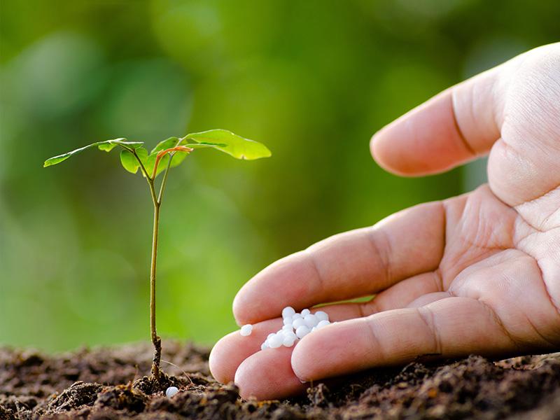 کاربرد اسید فسفریک در کود کشاورزی